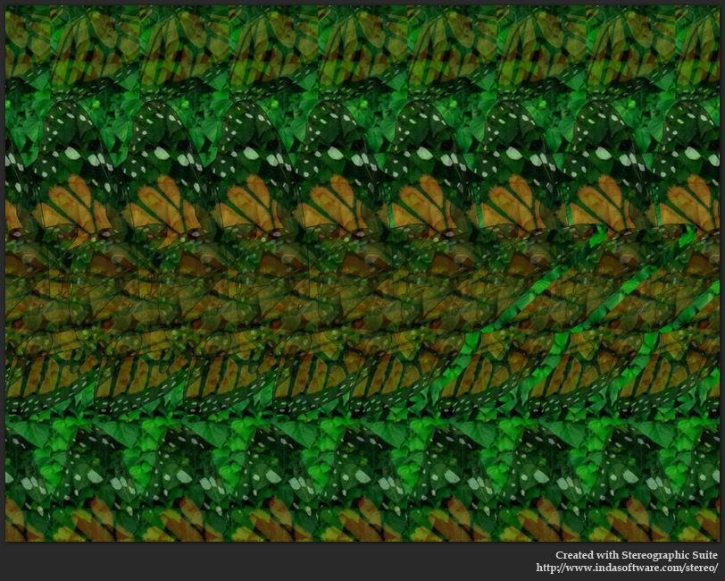 Stereogram by Indasoftware: Butterfly. Tags: , hidden 3D picture (SIRDS)
